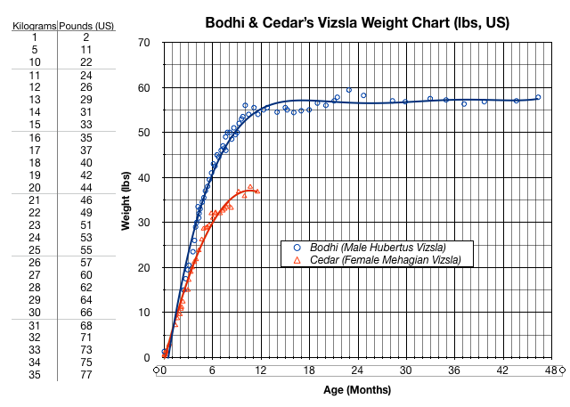 Bodhi Growth Chart